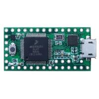 Микроконтроллер Teensy 3.1 MK20DX256